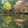 福王寺の紅葉