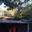 山のホテル 夢想園さんの紅葉(3) 2017