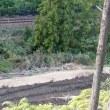 紀北町で首都圏からの建設残土を調査