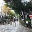 新宿四季の路を行ってみた。