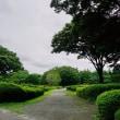 暑い夏の再来を待っている神代植物公園 その1