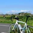 江戸川から利根川そして幸手へ。彼岸花サイクリング。
