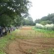 【実施報告】9月15日(金) 震生湖と渋沢丘陵