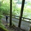 【台高】大杉国見山