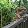 ヒギリ(緋桐)*ブラキオサウルス*メディニラスペキオサ