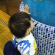 葛西臨海水族館🐟 その1