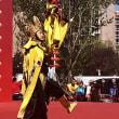 通州区台湖镇第8回 文化芸術祭 開幕!北京の雑技団も参加中(^^)