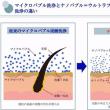 【ナノバブル特集】~その1~毛穴の汚れの洗浄効果について