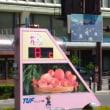 福島市「麺屋くさび」