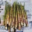 新玉ねぎと根曲がり竹