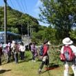 鹿児島歩こう会 4月例会は阿久根の最高峰高突山をめざして