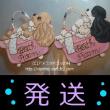 発送 コッカーちゃんのお風呂プレート BW バフ グッズ 犬雑貨