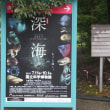 雨の上野公園・美術館は人の波、二つの美術展を鑑賞