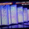 アートアクアリウム金魚の涼 (テレビより)