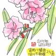 6月28日 スケッチ会 富岡八幡宮・深川不動尊
