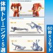 【ロードバイクで速くなるための体幹筋肉トレーニング】