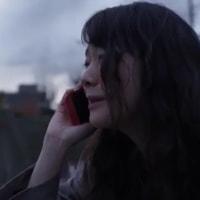 岩井俊二『リップヴァンウィンクルの花嫁』