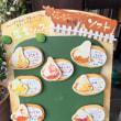 今日は天保年間に開窯された由緒ある伊賀焼〆苔肌忠央窯さんで料理用のお皿を買いました。