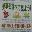 イベント『野草を食べて見よう!2019』が4月13日に開催されるよう@北方ミニ自然園