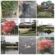 20001125千葉県立幕張海浜公園