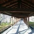 そうだ行こう京都の旅、ふたたび(9) お西さん、お東さん、京都タワーに東福寺