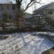 久しぶりの雪
