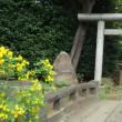 護国寺の富士山