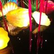 扇田克也-光のカタチ展〈富山市ガラス美術館〉