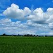 立山連峰に湧き上がり盛り上がる雲、そして西空の雲、海側の雲・・・立山町の空