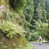 鷹取山 林道歩き