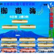 御嶽海 平成30年大相撲11月場所星取表