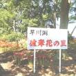 伊勢崎地区でヒガンバナを訪ねる H-29- 9-18