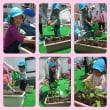 やさいの苗植え ひまわり組(3歳児)ゆり組(4歳児)さくら組(5歳児)