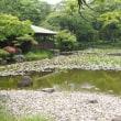 大阪  慶沢園