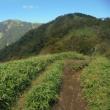 秋天の塔ノ岳と丹沢山