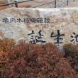 学内水循環施設(誕生池)  2015.01.20「208」