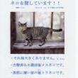OUJ(放送大学)の旅・心理学探究 (25) ~もう 帰ってこないペコ~