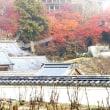 【奈良県桜井市】『源氏物語』ゆかりの地 長谷寺