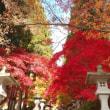 阿弥陀山清水寺へ紅葉見学
