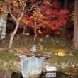 琵琶湖周辺の紅葉巡り
