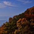 紅葉も山から里にと