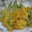 トウモロコシ「嶽きみ」とエダマメ「肴豆」のおかず