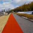 リハビリ散歩 2週間ぶりの布引運動公園