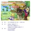 トムソーヤの冒険 in 渡嘉敷島