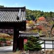 長谷寺の秋(奈良県桜井市)4