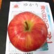 地場産 「津久井のリンゴ」      相模原市緑区
