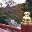 鎌倉、ちょっとブルブル