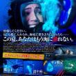 「海底47m」、ケージに入ってサメ鑑賞ツアー、だが、ケージが落下して!