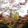 紅葉・温泉でリフレッシュ