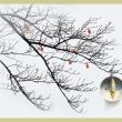 紅葉から枯れ枝へ